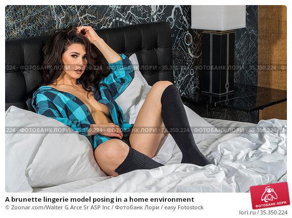 A brunette lingerie model posing in a home environment. Стоковое фото, фотограф Zoonar.com/Walter G Arce Sr ASP Inc / easy Fotostock / Фотобанк Лори