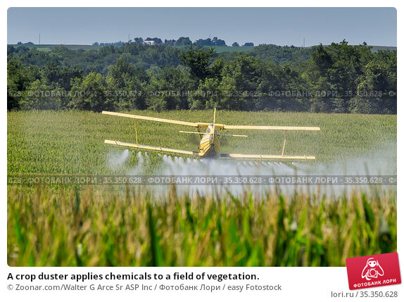 A crop duster applies chemicals to a field of vegetation. Стоковое фото, фотограф Zoonar.com/Walter G Arce Sr ASP Inc / easy Fotostock / Фотобанк Лори