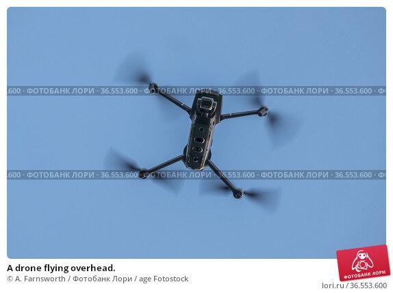 A drone flying overhead. Стоковое фото, фотограф A. Farnsworth / age Fotostock / Фотобанк Лори