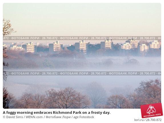 Купить «A foggy morning embraces Richmond Park on a frosty day. Featuring: Atmosphere Where: London, United Kingdom When: 29 Dec 2016 Credit: David Sims/WENN.com», фото № 28700872, снято 29 декабря 2016 г. (c) age Fotostock / Фотобанк Лори