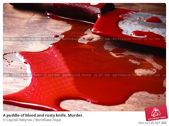 Купить «A puddle of blood and rusty knife. Murder.», фото № 25321308, снято 19 января 2017 г. (c) Сергей Лабутин / Фотобанк Лори