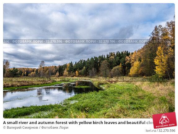 Купить «A small river and autumn forest with yellow birch leaves and beautiful clouds», фото № 32270596, снято 5 октября 2019 г. (c) Валерий Смирнов / Фотобанк Лори