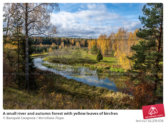 Купить «A small river and autumn forest with yellow leaves of birches», фото № 32270576, снято 5 октября 2019 г. (c) Валерий Смирнов / Фотобанк Лори