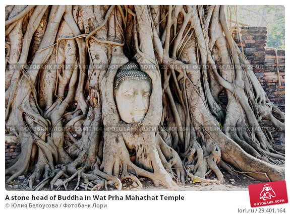 Купить «A stone head of Buddha in Wat Prha Mahathat Temple», фото № 29401164, снято 27 января 2017 г. (c) Юлия Белоусова / Фотобанк Лори