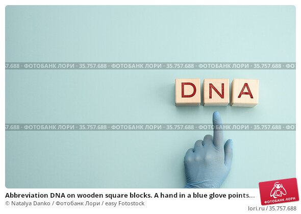 Abbreviation DNA on wooden square blocks. A hand in a blue glove points... Стоковое фото, фотограф Natalya Danko / easy Fotostock / Фотобанк Лори
