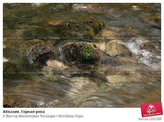 Абхазия. Горная река, фото № 233920, снято 1 августа 2005 г. (c) Виктор Филиппович Погонцев / Фотобанк Лори