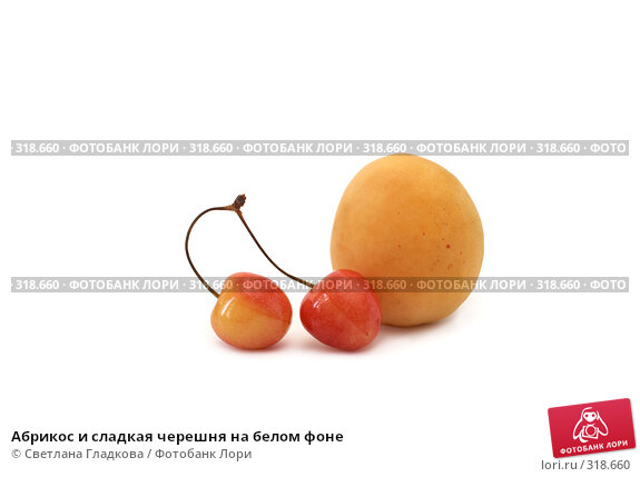Абрикос и сладкая черешня на белом фоне, фото № 318660, снято 8 июня 2008 г. (c) Cветлана Гладкова / Фотобанк Лори