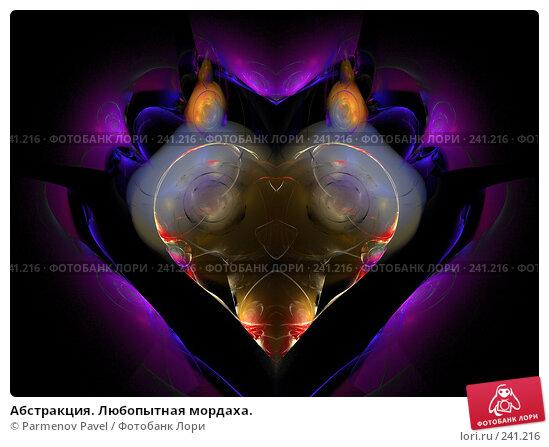 Абстракция. Любопытная мордаха., иллюстрация № 241216 (c) Parmenov Pavel / Фотобанк Лори