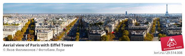 Купить «Aerial view of Paris with Eiffel Tower», фото № 29514008, снято 19 июля 2019 г. (c) Яков Филимонов / Фотобанк Лори