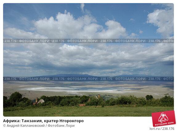 Африка: Танзания, кратер Нгоронгоро, фото № 238176, снято 18 февраля 2005 г. (c) Андрей Каплановский / Фотобанк Лори