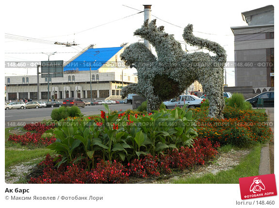 Ак барс, фото № 148460, снято 1 сентября 2007 г. (c) Максим Яковлев / Фотобанк Лори