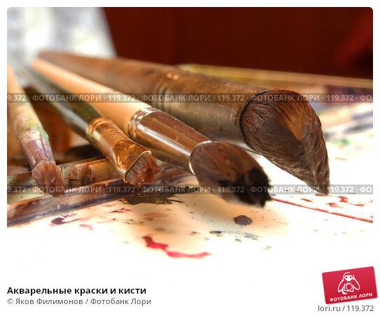 Акварельные краски и кисти, фото № 119372, снято 10 ноября 2007 г. (c) Яков Филимонов / Фотобанк Лори