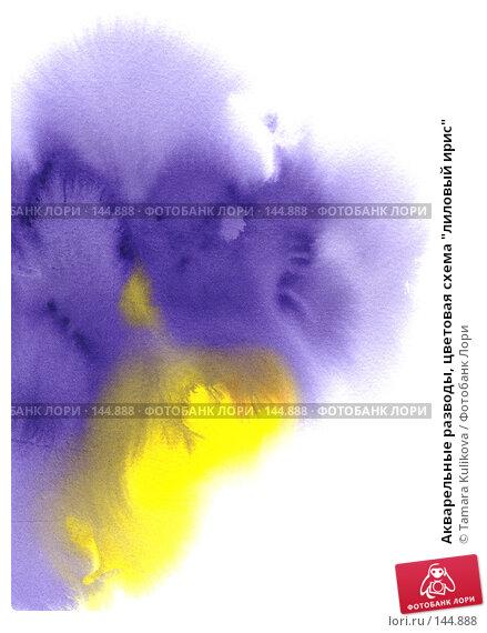 """Акварельные разводы, цветовая схема """"лиловый ирис"""", иллюстрация № 144888 (c) Tamara Kulikova / Фотобанк Лори"""