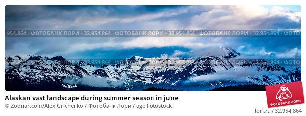 Alaskan vast landscape during summer season in june. Стоковое фото, фотограф Zoonar.com/Alex Grichenko / age Fotostock / Фотобанк Лори