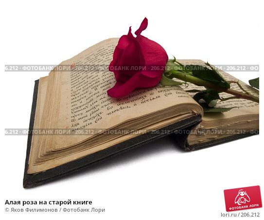 Алая роза на старой книге, фото № 206212, снято 8 февраля 2008 г. (c) Яков Филимонов / Фотобанк Лори