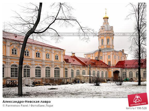 Александро-Невская лавра, фото № 199528, снято 8 февраля 2008 г. (c) Parmenov Pavel / Фотобанк Лори