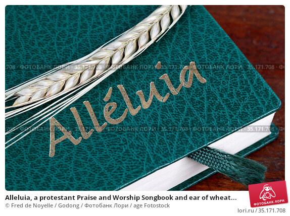 Alleluia, a protestant Praise and Worship Songbook and ear of wheat... Стоковое фото, фотограф Fred de Noyelle / Godong / age Fotostock / Фотобанк Лори