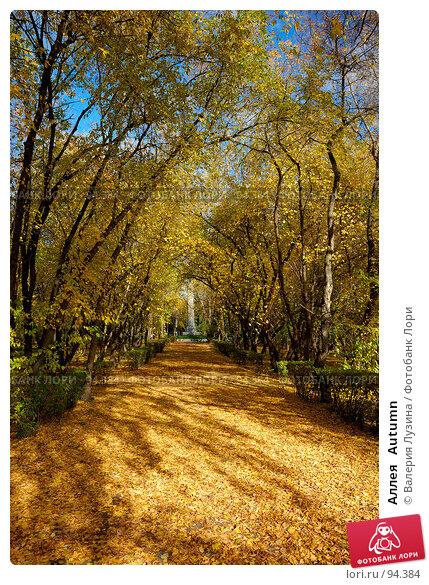 Аллея   Autumn, фото № 94384, снято 2 октября 2007 г. (c) Валерия Потапова / Фотобанк Лори