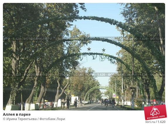 Аллея в парке, эксклюзивное фото № 1620, снято 10 сентября 2005 г. (c) Ирина Терентьева / Фотобанк Лори