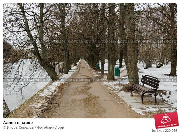 Аллея в парке, фото № 220056, снято 8 марта 2008 г. (c) Игорь Соколов / Фотобанк Лори