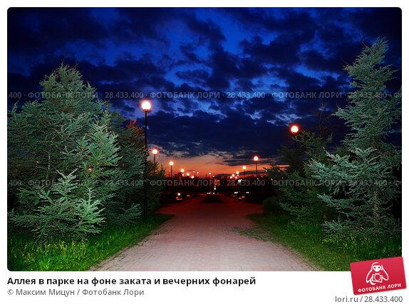 Купить «Аллея в парке на фоне заката и вечерних фонарей», фото № 28433400, снято 17 мая 2018 г. (c) Максим Мицун / Фотобанк Лори