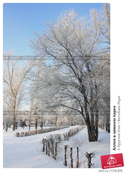Аллея в зимнем парке, фото № 174476, снято 12 января 2008 г. (c) Круглов Олег / Фотобанк Лори