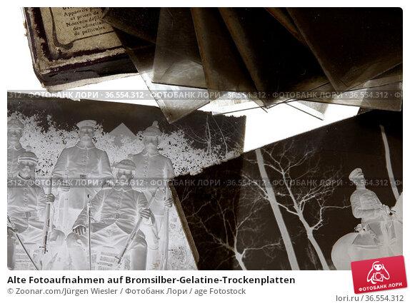 Alte Fotoaufnahmen auf Bromsilber-Gelatine-Trockenplatten. Стоковое фото, фотограф Zoonar.com/Jürgen Wiesler / age Fotostock / Фотобанк Лори