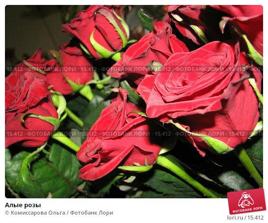 Алые розы, фото № 15412, снято 14 декабря 2006 г. (c) Комиссарова Ольга / Фотобанк Лори