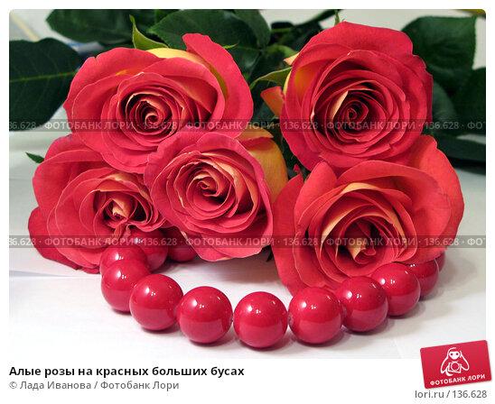 Алые розы на красных больших бусах, фото № 136628, снято 1 сентября 2007 г. (c) Лада Иванова / Фотобанк Лори