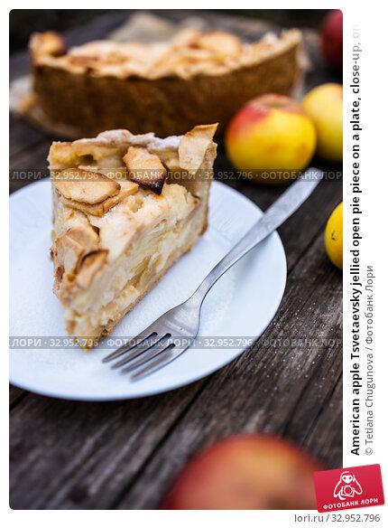 American apple Tsvetaevsky jellied open pie piece on a plate, close-up, on a dark wooden background. Flat lay. Стоковое фото, фотограф Tetiana Chugunova / Фотобанк Лори