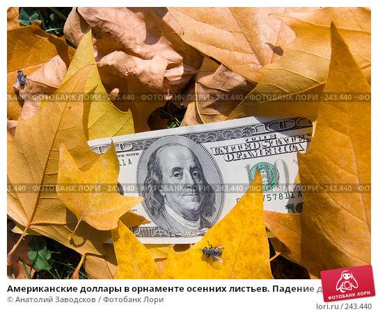 Купить «Американские доллары в орнаменте осенних листьев. Падение доллара», фото № 243440, снято 23 сентября 2007 г. (c) Анатолий Заводсков / Фотобанк Лори