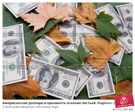 Американские доллары в орнаменте осенних листьев. Падение доллара, фото № 243444, снято 25 сентября 2007 г. (c) Анатолий Заводсков / Фотобанк Лори