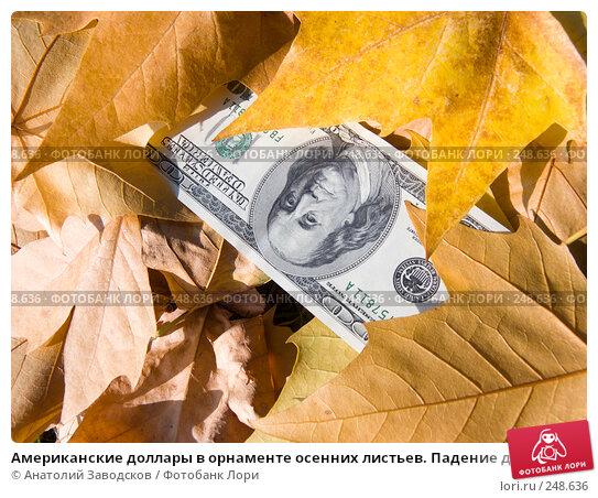 Американские доллары в орнаменте осенних листьев. Падение доллара, фото № 248636, снято 23 сентября 2007 г. (c) Анатолий Заводсков / Фотобанк Лори
