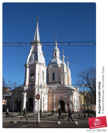 Андреевский собор, фото № 260356, снято 26 февраля 2008 г. (c) Бяков Вячеслав / Фотобанк Лори