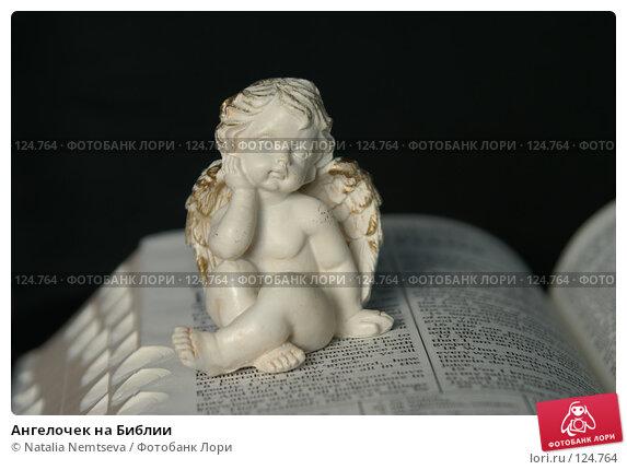 Ангелочек на Библии, эксклюзивное фото № 124764, снято 9 ноября 2007 г. (c) Natalia Nemtseva / Фотобанк Лори
