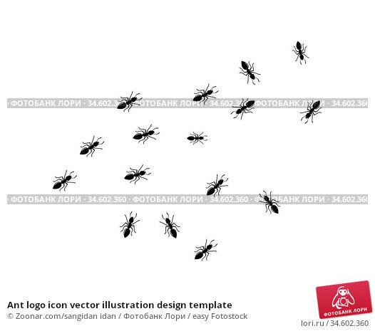 Ant logo icon vector illustration design template. Стоковое фото, фотограф Zoonar.com/sangidan idan / easy Fotostock / Фотобанк Лори