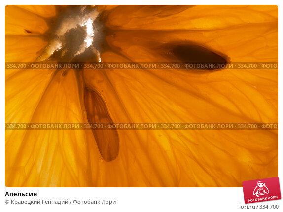 Апельсин, фото № 334700, снято 25 сентября 2004 г. (c) Кравецкий Геннадий / Фотобанк Лори