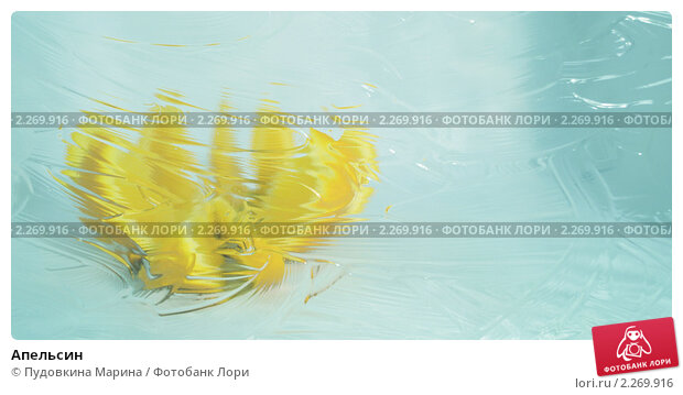 Апельсин. Стоковое фото, фотограф Пудовкина Марина / Фотобанк Лори