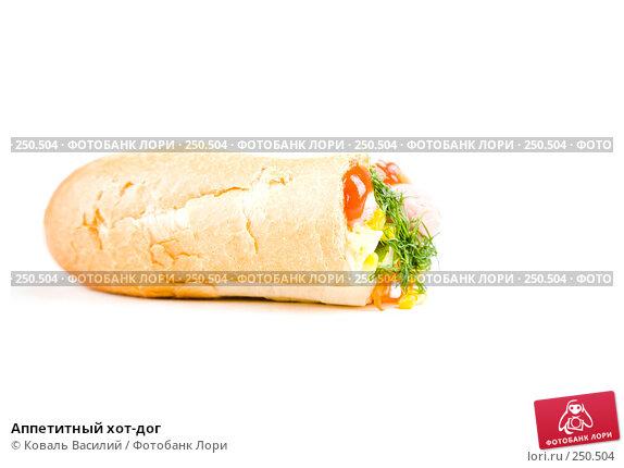 Купить «Аппетитный хот-дог», фото № 250504, снято 6 октября 2007 г. (c) Коваль Василий / Фотобанк Лори