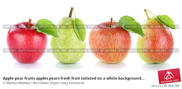 Apple pear fruits apples pears fresh fruit isolated on a white background... Стоковое фото, фотограф Markus Mainka / easy Fotostock / Фотобанк Лори