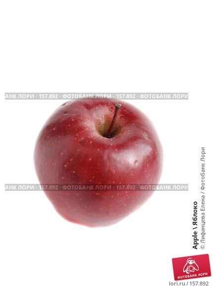 Apple \ Яблоко, фото № 157892, снято 20 декабря 2007 г. (c) Лифанцева Елена / Фотобанк Лори