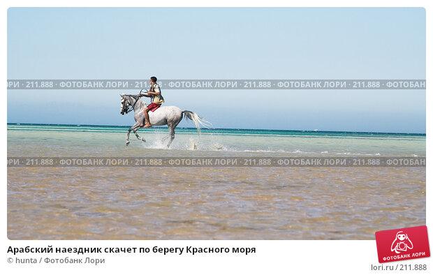 Арабский наездник скачет по берегу Красного моря, фото № 211888, снято 16 сентября 2007 г. (c) hunta / Фотобанк Лори