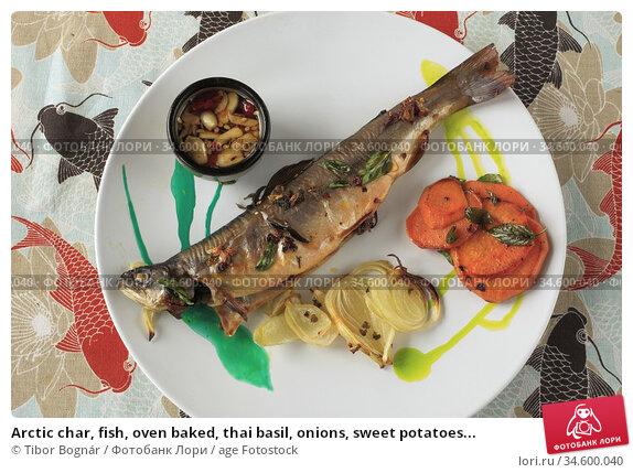 Arctic char, fish, oven baked, thai basil, onions, sweet potatoes... Стоковое фото, фотограф Tibor Bognár / age Fotostock / Фотобанк Лори