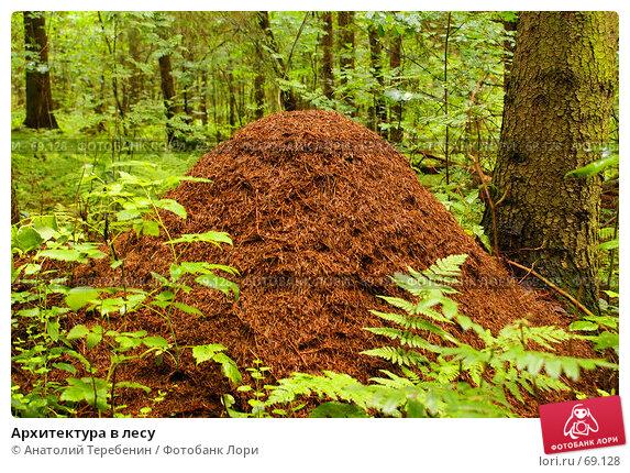 Архитектура в лесу, фото № 69128, снято 14 июля 2007 г. (c) Анатолий Теребенин / Фотобанк Лори