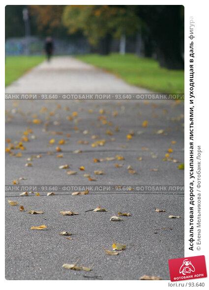 Асфальтовая дорога, усыпанная листьями, и уходящая в даль фигура, фото № 93640, снято 23 сентября 2007 г. (c) Елена Мельникова / Фотобанк Лори