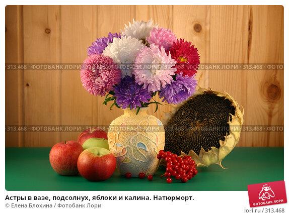 Астры в вазе, подсолнух, яблоки и калина. Натюрморт., фото № 313468, снято 4 сентября 2007 г. (c) Елена Блохина / Фотобанк Лори