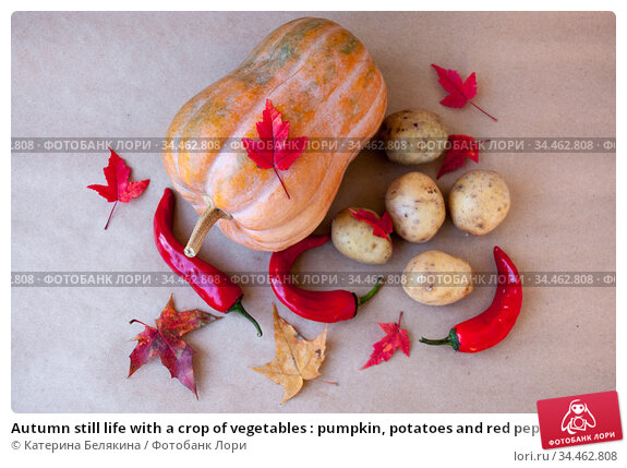 Autumn still life with a crop of vegetables : pumpkin, potatoes and red pepper with maple leaves. Стоковое фото, фотограф Катерина Белякина / Фотобанк Лори