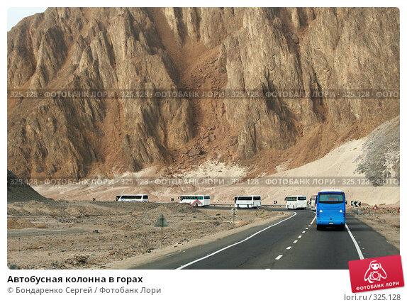 Автобусная колонна в горах, фото № 325128, снято 8 марта 2008 г. (c) Бондаренко Сергей / Фотобанк Лори