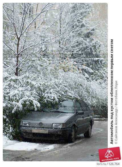 Купить «Автомобиль под кустом облепленном первым снегом», эксклюзивное фото № 126764, снято 14 октября 2007 г. (c) Сайганов Александр / Фотобанк Лори