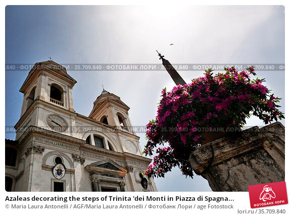 Azaleas decorating the steps of Trinita 'dei Monti in Piazza di Spagna... Редакционное фото, фотограф Maria Laura Antonelli / AGF/Maria Laura Antonelli / age Fotostock / Фотобанк Лори